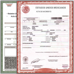 Acta de Nacimiento en Linea Nuevo Leon